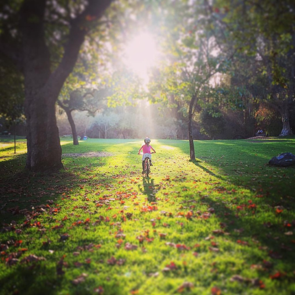 autumnBike